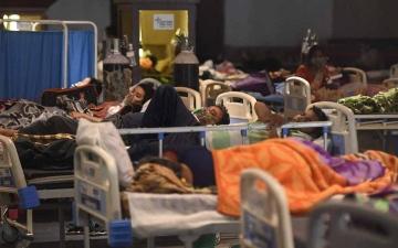 الصورة: الصورة: تسجيل أول إصابة بالفطر الأخضر في الهند