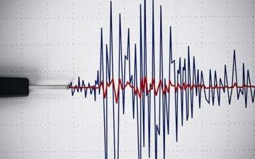 الصورة: الصورة: زلزال بقوة 5.4 درجات يضرب المكسيك
