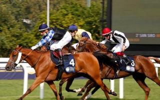 الصورة: الصورة: كأس رئيس الدولة للخيول العربية  في ميلانو اليوم