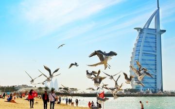 الصورة: الصورة: سواحل الإمارات حاضنة أجمل الأيقونات العمرانية في العالم