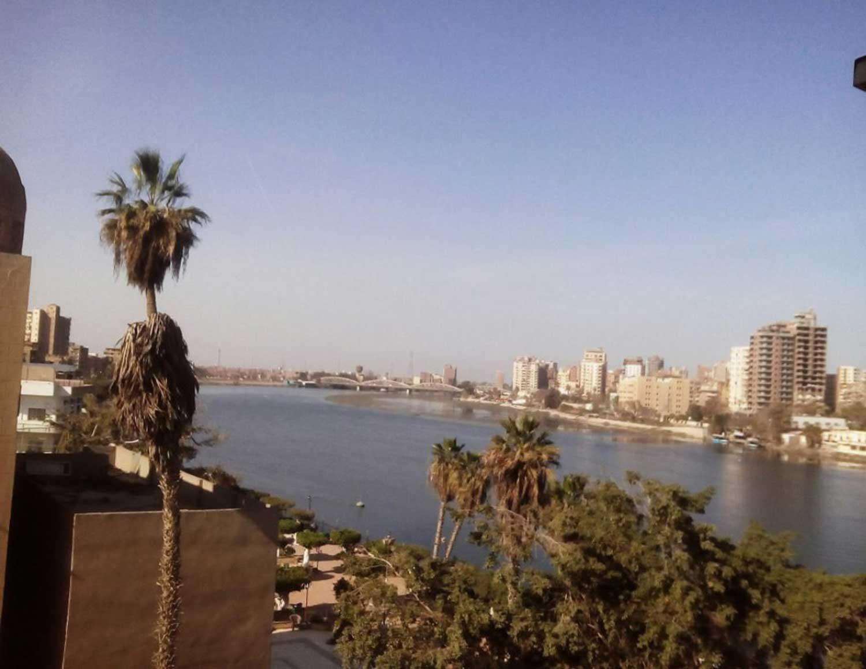 صورة مصر .. أنباء عن خروج تمساح من النيل و الأهالي في حالة رعب – منوعات
