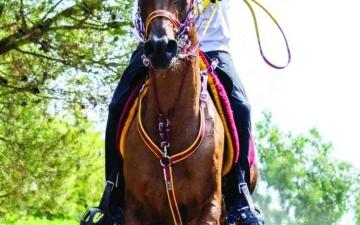 الصورة: الصورة: فارس المنصوري  بطل مونديال الخيول الصغيرة