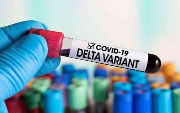 """الصورة: الصورة: """"الصحة العالمية"""": """"دلتا"""" تطغى على سائر متحورات فيروس كورونا الأخرى في العالم"""