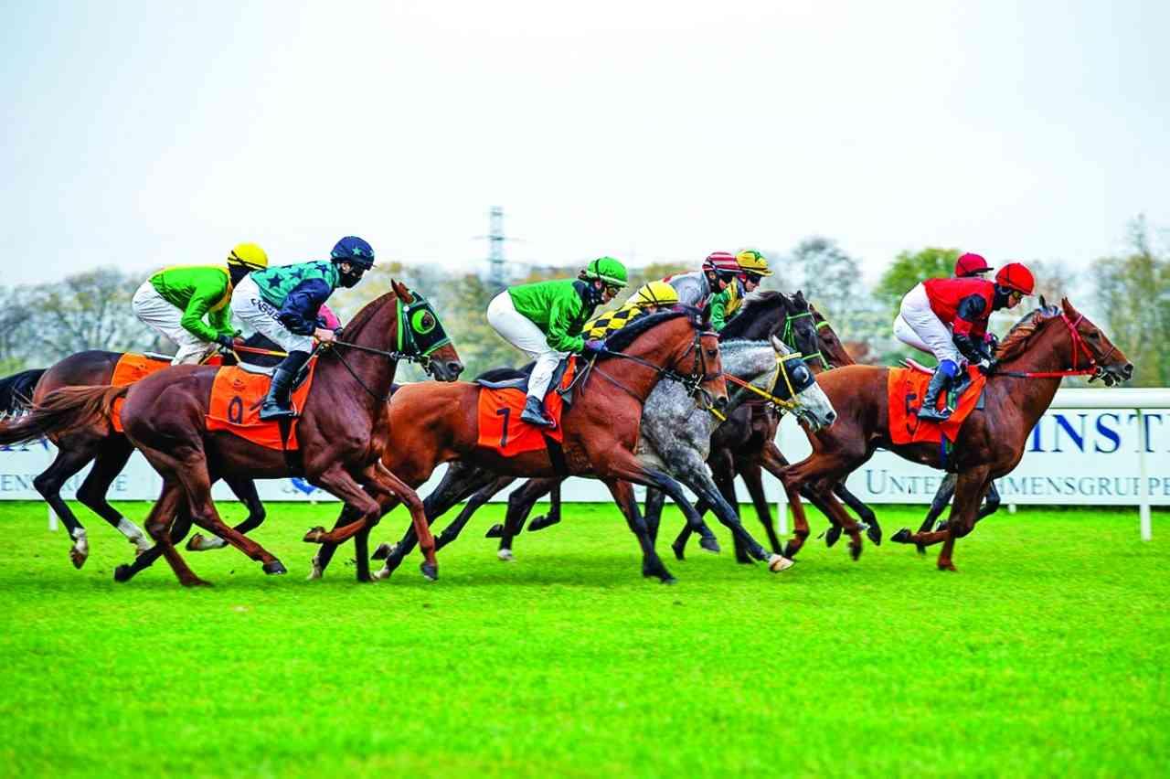 كأس رئيس الدولة للخيول العربية في بولندا اليوم