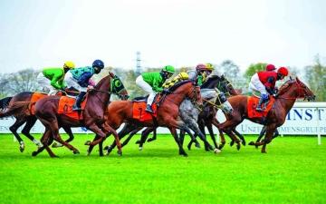 الصورة: الصورة: كأس رئيس الدولة للخيول العربية في بولندا اليوم